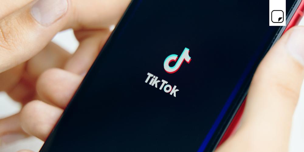 TikTok: wleC Blog